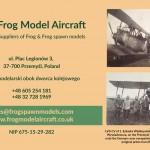 frog - Kopia