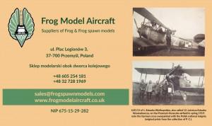 frog-Kopia